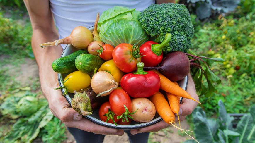 Как правильно ухаживать за овощами, которые уже созрели?