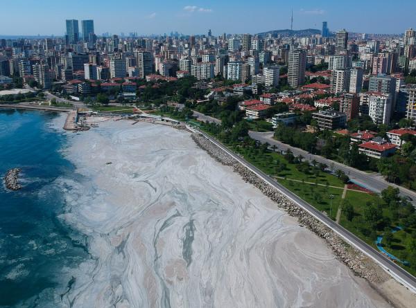 Мерзкая слизь на турецких курортах: Мраморное море спасают от экокатастрофы