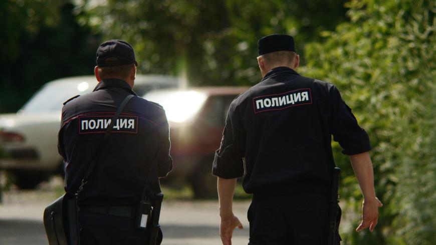 Мошенников нет только в лесу: красноярские полицейские сняли креативный социальный ролик