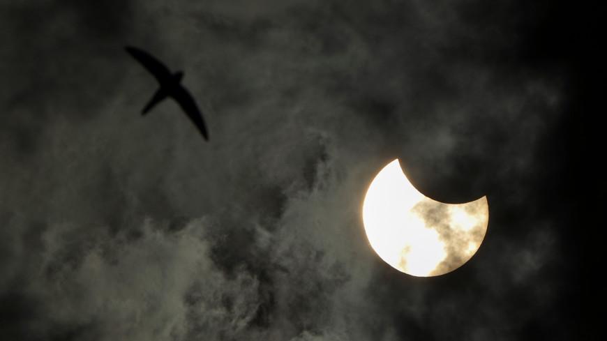 Небесное шоу: кому удалось в России наблюдать кольцеобразное затмение Солнца