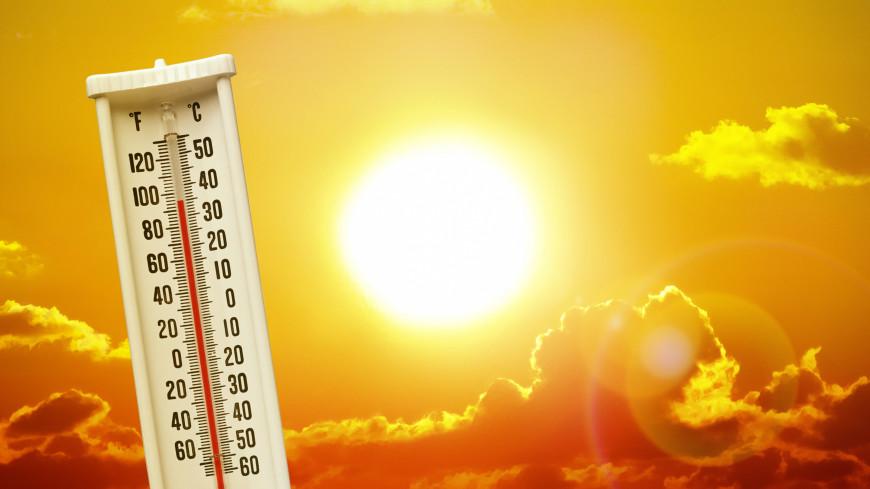 Сильная жара сменится освежающими ливнями в конце недели