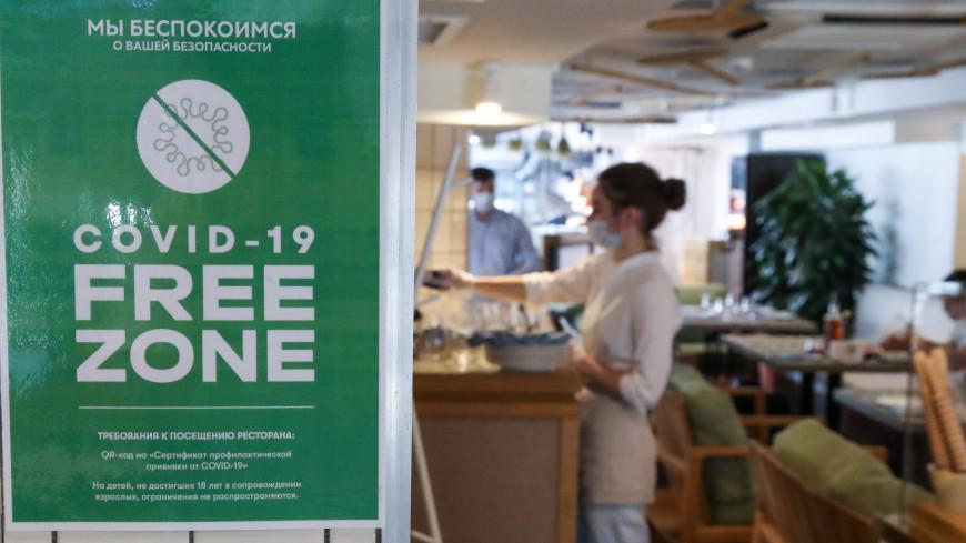 «Свободные от коронавируса» кафе и спортзалы появятся в Якутии