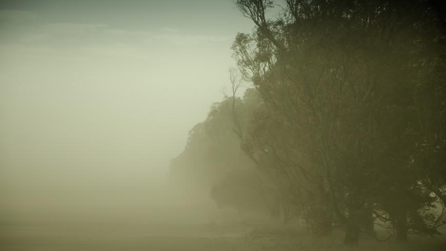 Ставрополь накрыла пыльная буря