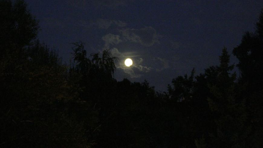 "Фото: Елена Андреева ""«Мир24»"":http://mir24.tv/, полнолуние, ночь, луна"