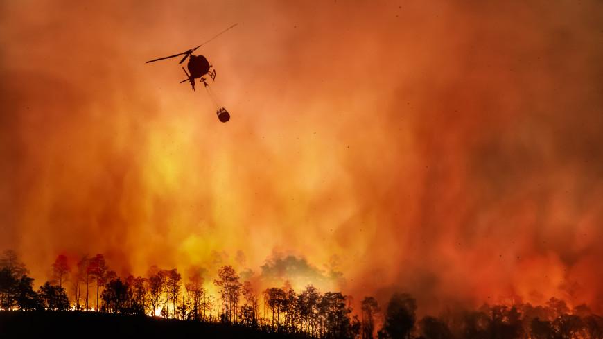 Правительство России выделило 5 млрд рублей на создание лесопожарного центра «Север»