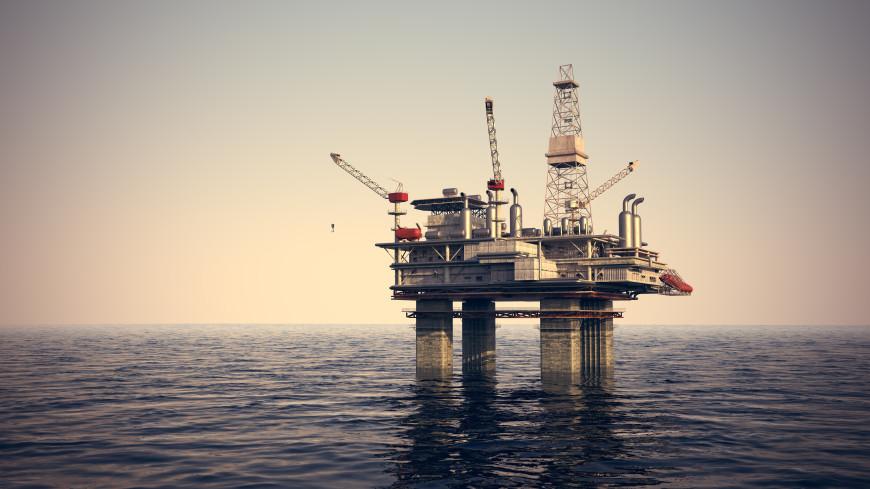 Нефть в 2021 году подорожала рекордными за 12 лет темпами