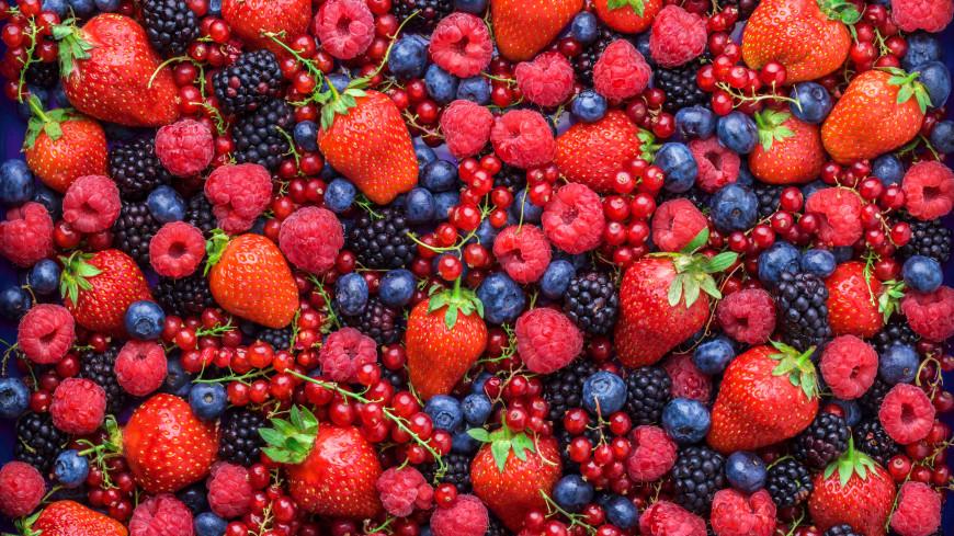 Великолепная семерка: диетолог перечислила продукты для повышения иммунитета