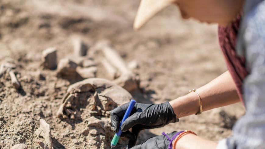 Ученые, изучив харбинский череп, заявили о новом виде древнего человека
