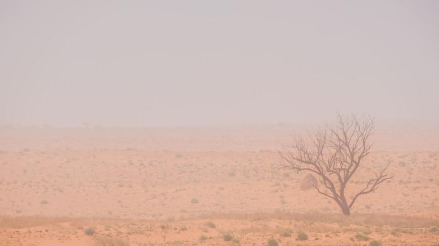 В Астрахань снова нагрянула пыльная буря