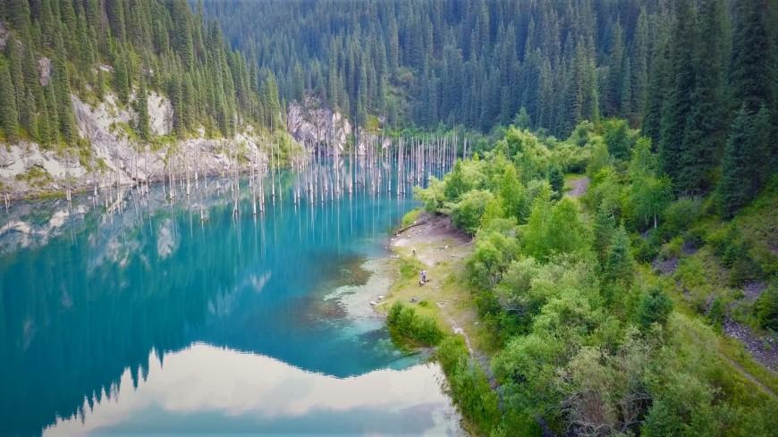 Озеро Кайынды в Казахстане: загадки затонувшего леса