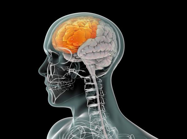 Ученые научились «читать» реакцию мозга пациентов с тяжелыми расстройствами сознания
