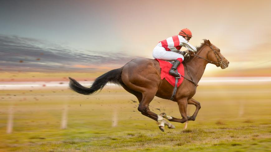 Спортдайджест: в Дубае жокей выиграл гонку с последнего места