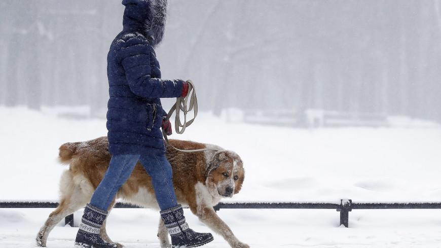 Погода в СНГ: на Казахстан обрушились метели, в Кыргызстане температурные скачки