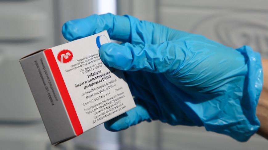 Центр «Вектор» получил более 50 запросов из-за рубежа на испытания вакцины «ЭпиВакКорона»
