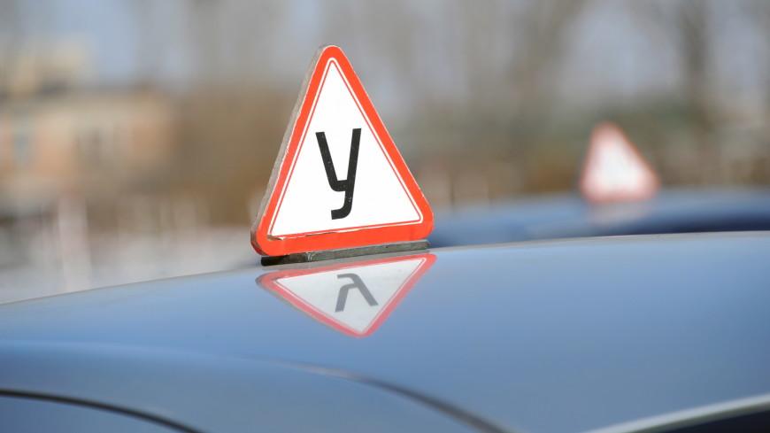 Наблюдатели и отмена «площадки»: как изменятся в России правила сдачи экзамена на автоправа