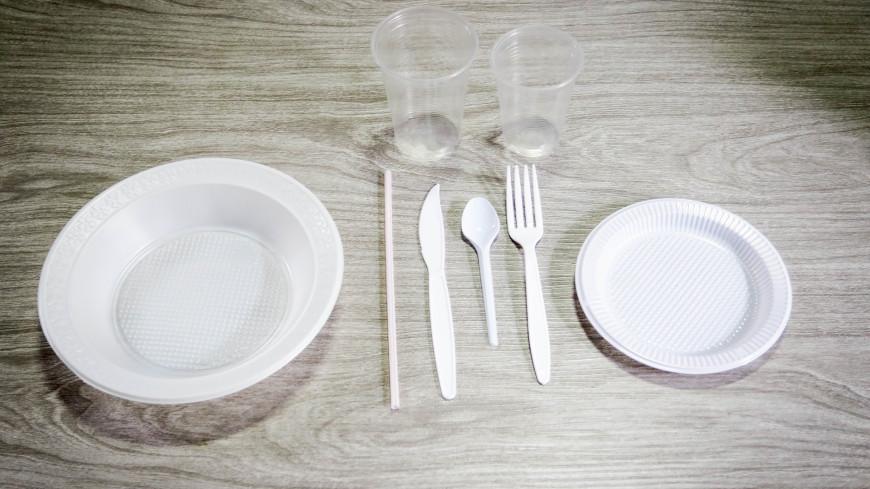 Более 80% россиян, заботясь об экологии, готовы отказаться от пластиковой посуды