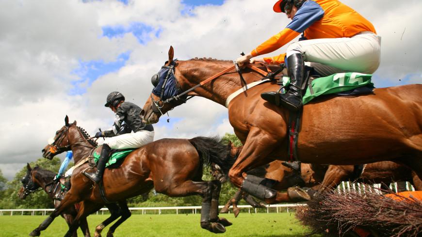 Бердымухамедов одобрил тотализатор на конных скачках в Туркменистане