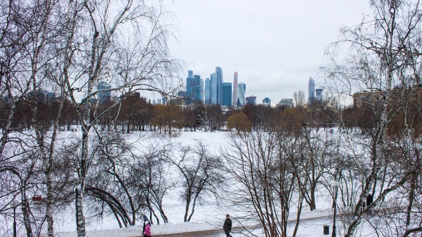 Морозный март: Россия попала в зону арктического вторжения