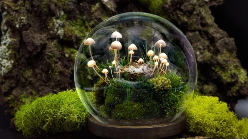 Магические грибы: художница из Иванова создает уникальные светильники