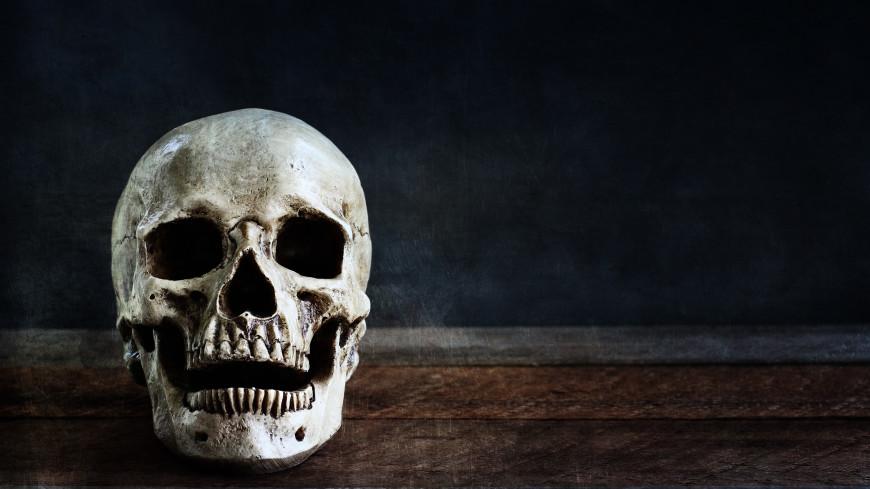 Раскрыта тайна древнего черепа из пещеры в итальянской Болонье