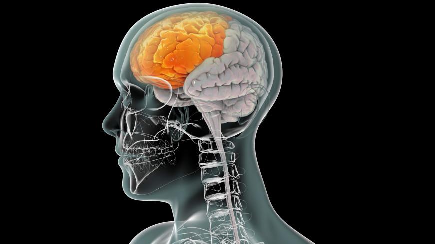 Ученые научилиь «читать» реакцию мозга пациентов с тяжелыми расстройствами сознания