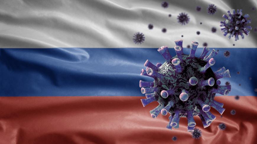 Мощный «санитарный щит»: Россию защитят от проникновения вирусов