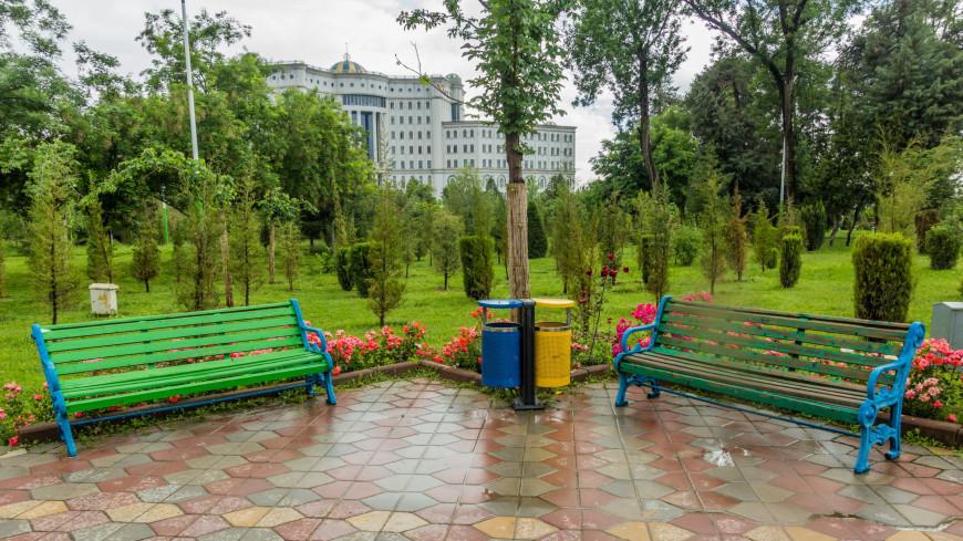 Погода в СНГ: дожди в Таджикистане, экстремальный зной в Армении