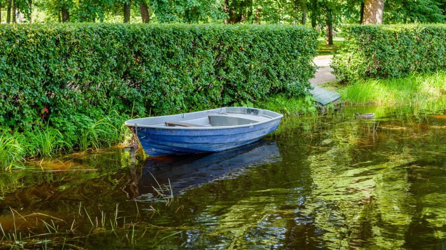 "Фото: Марина Дыкун (МТРК «Мир») ""«Мир 24»"":http://mir24.tv/, лодка, санкт-петербург, питер, парк, петергоф, пруд"