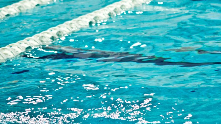 """Фото: Елена Андреева, """"«Мир 24»"""":http://mir24.tv/, водное поло, бассейн"""