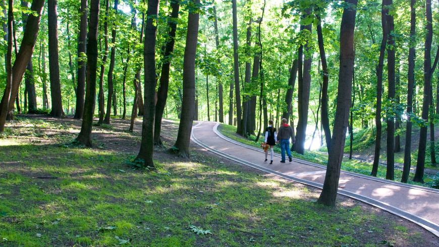 Из-за жары москвичам посоветовали меньше находиться на улице