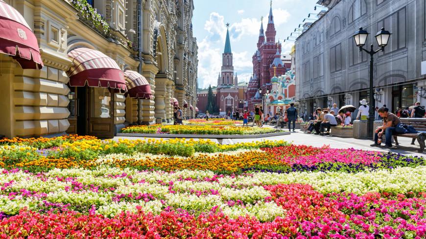 Буйство ярких красок: тюльпаны и виолы украсили Кремль и Александровский сад