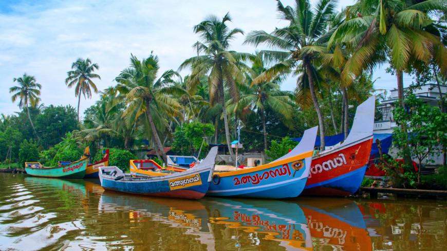 пальма, лодка, остров, таиланд, туризм, пляж, турист, туризм. отпуск, природа,