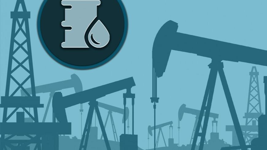 В Минприроды рассказали, на сколько лет в России хватит газа и нефти