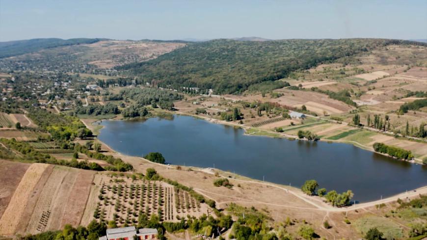 Нет леса, нет дождей: Молдова может превратиться в пустыню