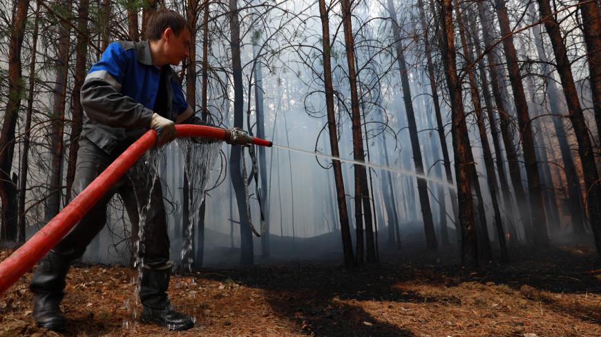 МЧС: Ситуация с природными пожарами в Тюменской области стабилизировалась