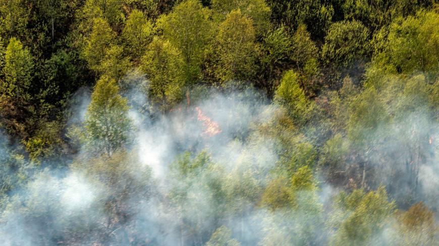 Лесной огонь чуть не добрался до парка «Иремель» в Башкирии