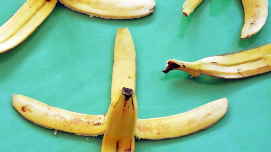 В Японии создали стройматериал из банановой кожуры и водорослей