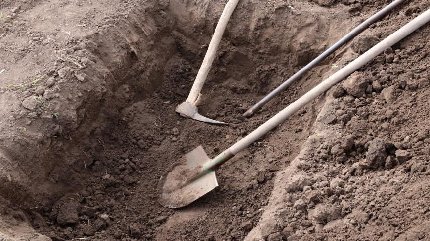 Массовое захоронение мирных граждан обнаружили под Новгородом