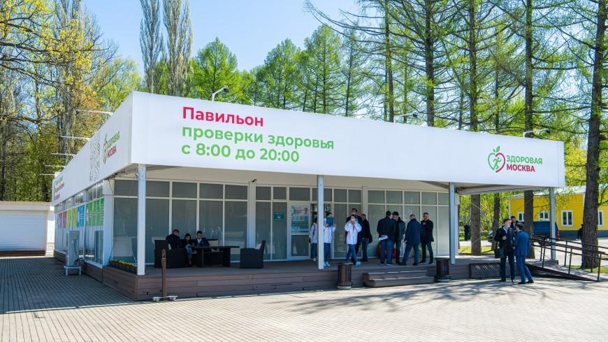 Собянин открыл в Измайловском парке первый павильон «Здоровая Москва»