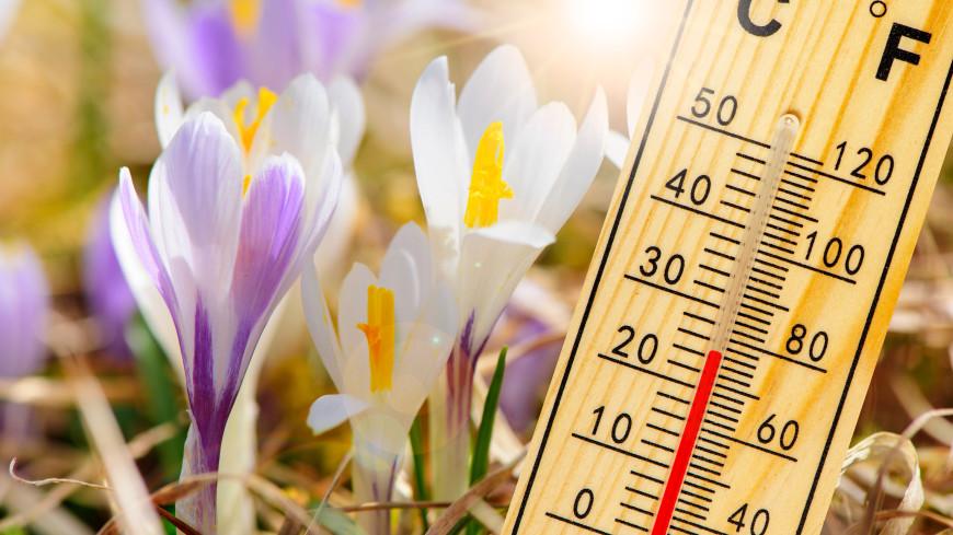 После аномально жарких дней наступит похолодание. Подробный прогноз погоды на неделю