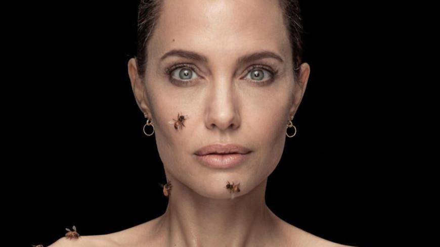 Анджелину Джоли облепил рой пчел (ФОТО)