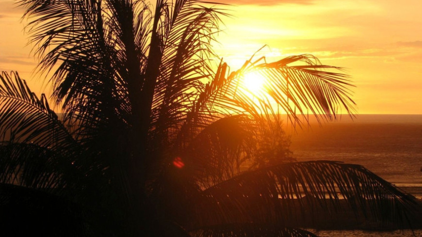 """Фото: Сергей Рабкин (МТРК «Мир») """"«Мир 24»"""":http://mir24.tv/, закат, таиланд, море пляж, пальмы, пальма, сиамский залив, андаманское море"""