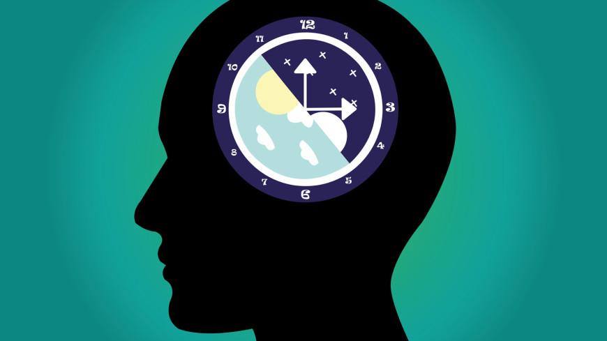 Ученые научились управлять биологическими часами