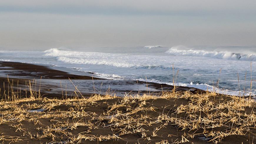 © Фото: Петр Королев, МТРК «Мир», берег, камчатка, море
