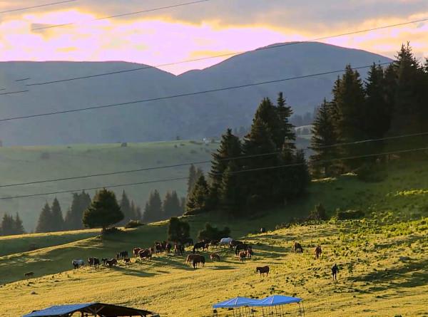Отведать кумыс и насладиться горными пейзажами: пять причин отправиться в Жыргалан