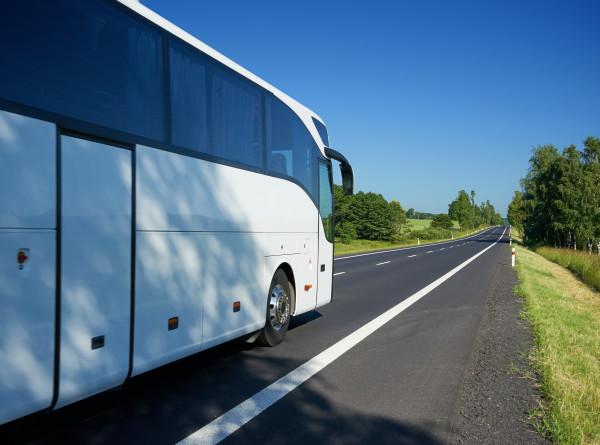 Как в нерабочие дни будет работать междугородний транспорт и что нужно, чтобы на нем уехать?
