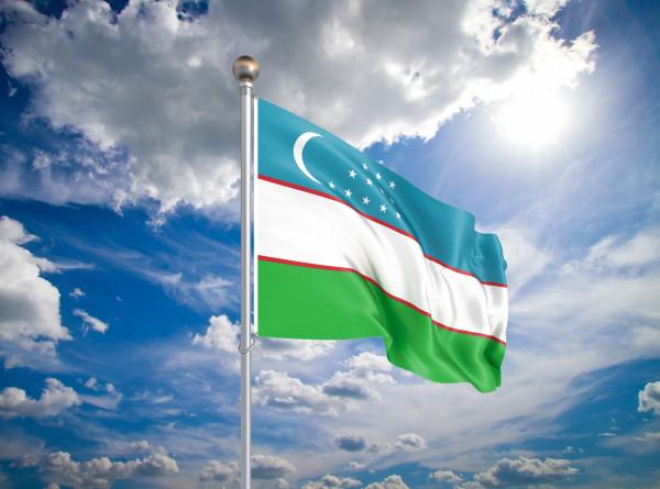 В Узбекистане началось досрочное голосование на выборах президента