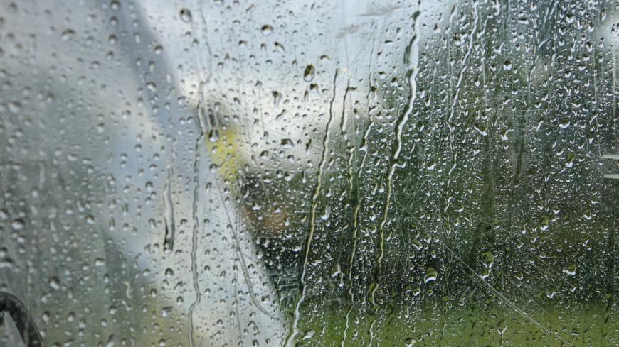 Синоптики рассказали, когда дожди сменят теплую и сухую погоду в Москве