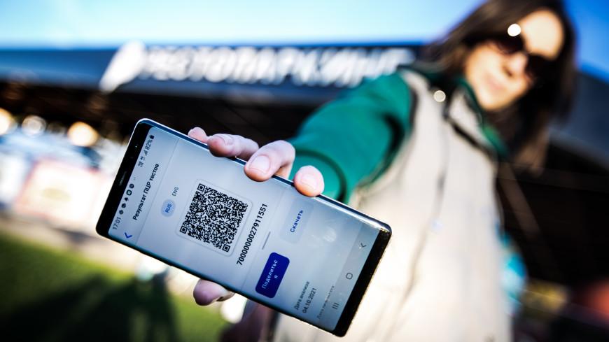 В Свердловской области с 8 ноября для посещения общественных мест введут QR-коды
