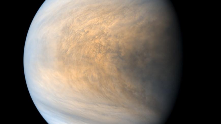 Облака Венеры могут поддерживать фотосинтез